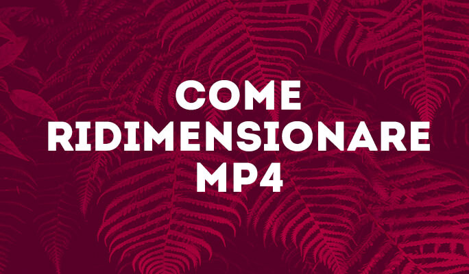 Come Ridimensionare MP4