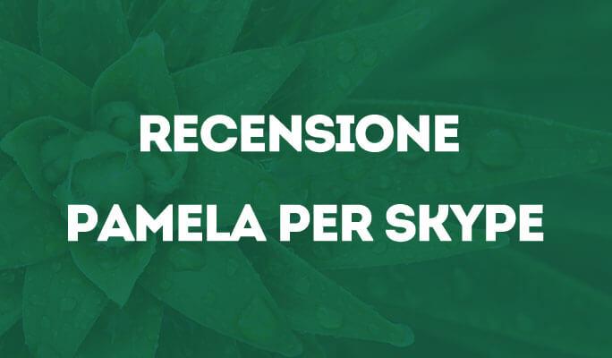 Recensione Pamela per Skype
