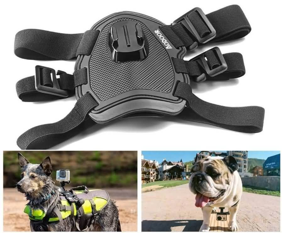 Aodoor Chest e Back Harness per animali da compagnia