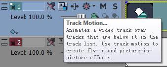 Video track information header