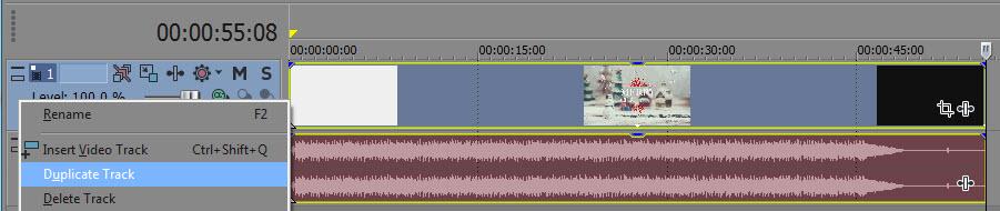 Duplicate video track