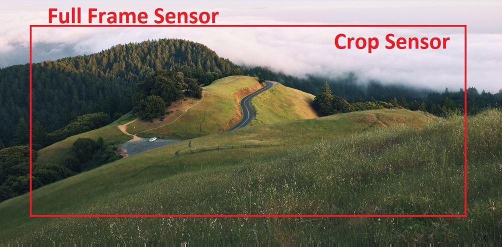 frame sensor